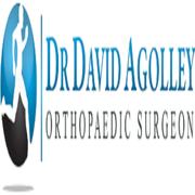 Dr David Agolley